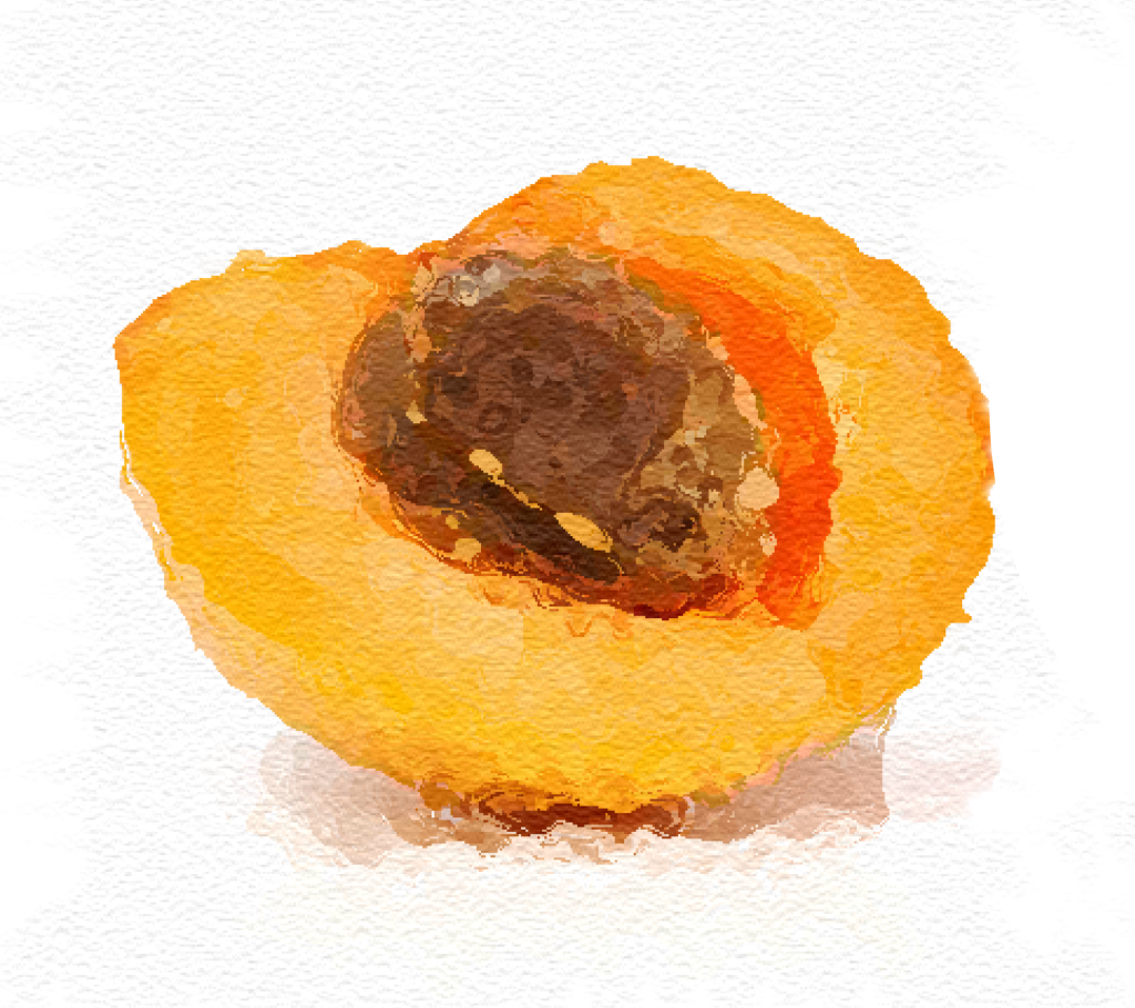 5 voordelen van abrikozenpit olie